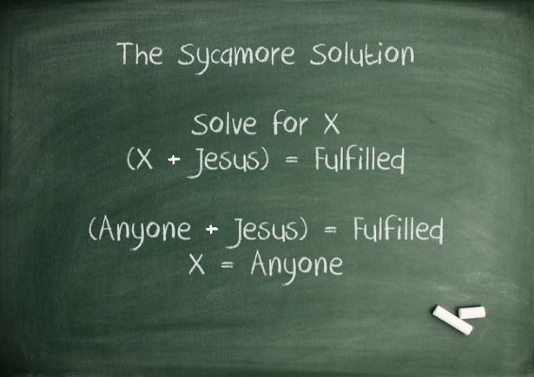 sycamore solution
